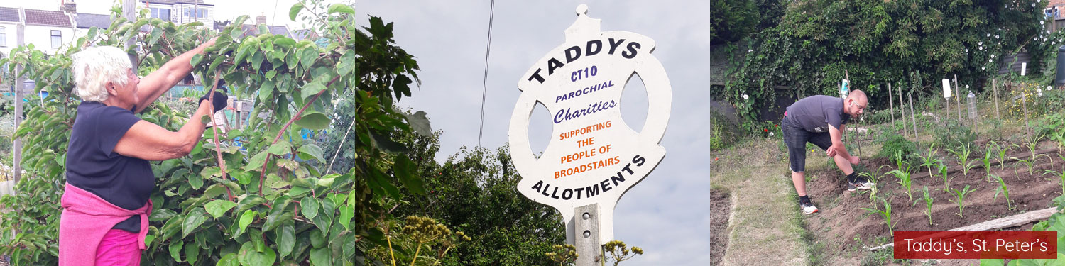Images of Taddy's, St. Peter's